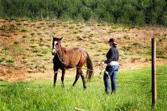 Lady Training Colt stock photos