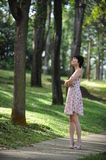 Lady and tree royalty free stock photography
