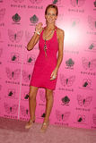Lady Victoria Hervey Stock Images