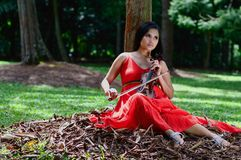 Lady with a Violin Stock Photo