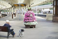 Lady waiting for train arrival sat on bench with dog inside victorian railway station in Wemyss Bay Uk royalty free stock photo