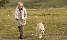 Lady waling dog. A mature lady walking her dog in bush land stock photo
