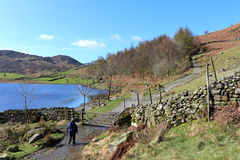 Lady walker on footpath by Watendlath Tarn at gate Royalty Free Stock Photography