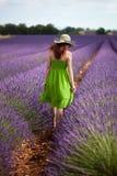 Lady walking in lavender field, wearing green dress and nostalgi Royalty Free Stock Photo