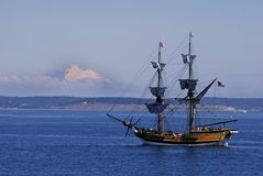 Lady washington. With mount baker background Stock Images
