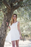 Lady wear white dress under the olive tree Stock Images