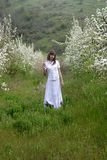 Lady in white between blossoming trees Royalty Free Stock Photography