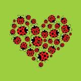 Ladybags hjärta Royaltyfria Foton