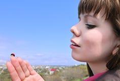 ladybird девушки Стоковые Изображения RF