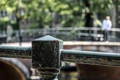Ladybird сидя на загородке рядом с каналом Амстердама Стоковая Фотография RF