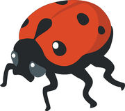 Ladybird 01. Ladybird silhouette in  color 01 Stock Photography