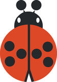 Ladybird 02 Stock Image