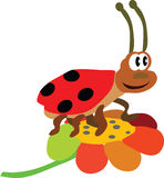 The ladybird. The vector illustration with  ladybird Stock Image
