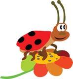 The ladybird Stock Image