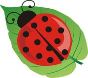 Ladybird. The red ladybug sitting on the green leaf Royalty Free Stock Image