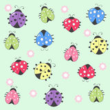 Ladybird. Cute romantic seamless background with ladybirds and flowers Royalty Free Stock Photo