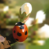 Ladybird. A ladybird on a branch Royalty Free Stock Images