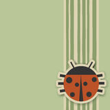 Ladybird Photos libres de droits