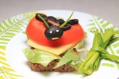 Ladybird Стоковое Изображение RF