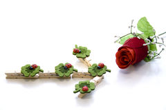 Ladybird. Valentine's Day with ladybird and rose Stock Photo