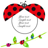 Ladybird baby shower greeting card with colorful ladybird Stock Photo