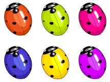 Ladybird beetle. Unreal colours illustration Stock Image