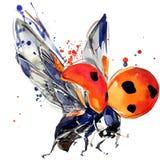 Ladybird beetle T-shirt graphics, ladybird illustration with splash watercolor textured background. vector illustration