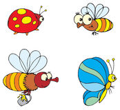 Ladybird, butterfly and bee vector illustration