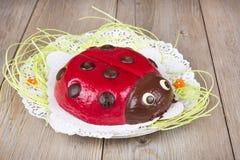 Ladybird cake on wooden background Royalty Free Stock Photo
