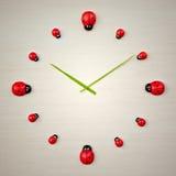 Ladybird clock. An image of a beautiful ladybird clock Royalty Free Stock Image