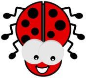 Ladybird con i grandi occhi Fotografia Stock