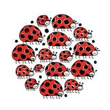 Ladybird family, frame for your design Stock Image