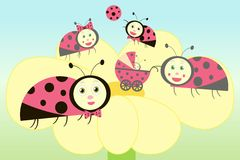 Ladybird family illustration Royalty Free Stock Photos