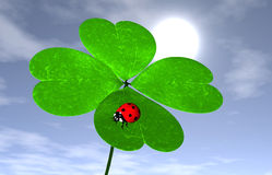 Ladybird on a four-leaves clover Royalty Free Stock Photo
