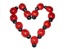Ladybird heart Stock Photography