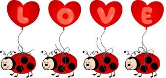 Ladybird Holding Love Heart Balloon Royalty Free Stock Photo