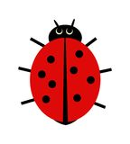 Ladybird illustration Royalty Free Stock Photo