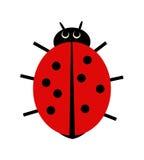 Ladybird illustration. Vector illustration of a ladybird on white background Royalty Free Stock Photo