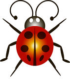 Ladybird. This image is a  illustration and can be scaled to any size without loss of resolution. This image will download as a .eps file Stock Images