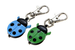Ladybird Keychain Stock Images