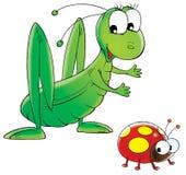 ladybird konika polnego ilustracji