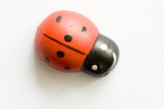 Ladybird / ladybub. Close-up imitation wood insect Stock Photo