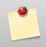Ladybird magnet pin on sheet Stock Photo