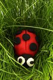 Ladybird from plasticine Stock Images