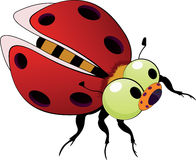 Ladybird toy Stock Image