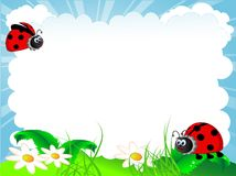 Ladybird. Vector illustration of the ladybird and cloud Stock Photography