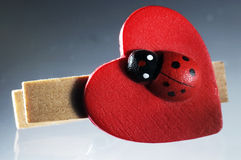 Ladybird on a wooden clip Royalty Free Stock Photography