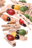 Ladybird Wooden Pegs Isolated Royalty Free Stock Image