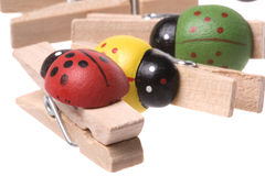 Ladybird Wooden Pegs Isolated Stock Photos