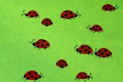 Ladybirds на зеленой предпосылке Стоковые Изображения RF